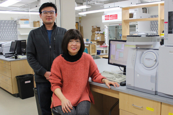 Chemistry Professor Kyoung-Shin Choi (right) and postdoctoral researcher Hyun Gil Cha (left) have developed an innovative approach to combining solar energy conversion and biomass conversion.
