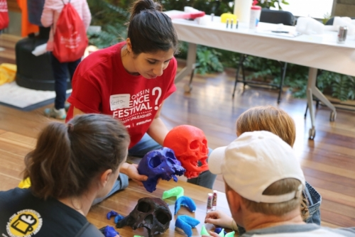 volunteer shows 3D printed skulls